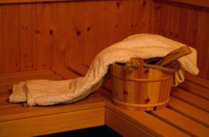 Limpieza y mantenimiento de las saunas del hogar