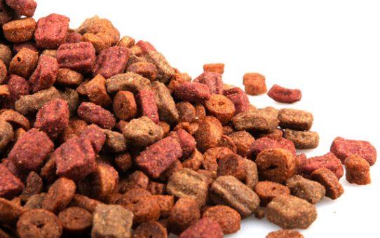 ¿Cómo saber si la comida para perros que se adquiere es buena?